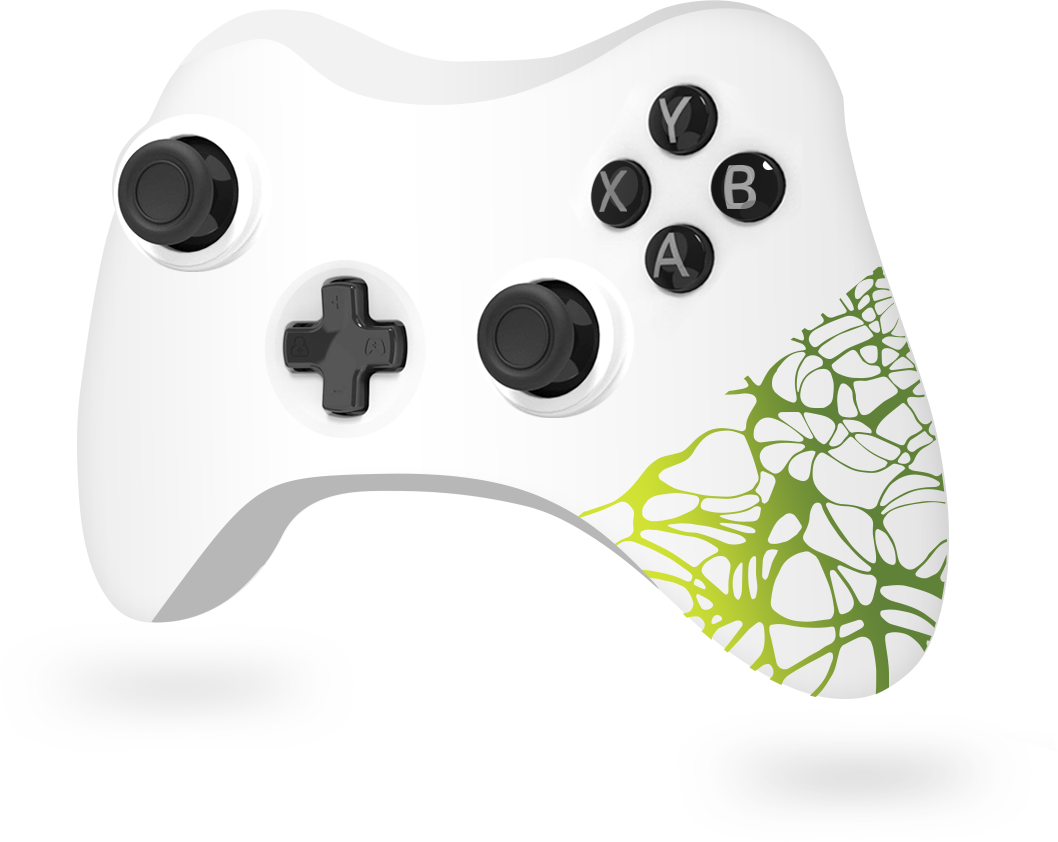 Video game remote control with customization